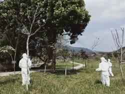 防治荔枝椿象 竹山鎮執行「殺蟲計畫」