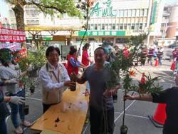 下營公所捐發票贈樹苗活動 半小時領光
