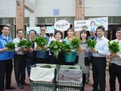 雲林每周採購20公噸蔬菜 助農民度過疫情衝擊