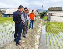 台肥穩定供應複肥 一次滿足農友需求