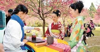民喊「出國旅行是人權」 醫嘆:最擔心4月日本櫻花季