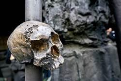 新幾內亞島土著慘笑死 專家入叢林驚:食人族