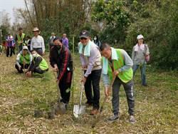 左鎮區種下逾千株花樹 盼「遍地開花」吸遊客
