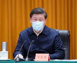 習近平:防範國內疫情反彈與國際疫情輸入風險