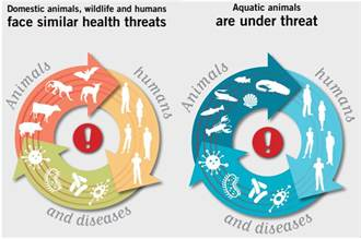 健康一體系列報導(一):防疫為何要從「健康一體」反思並多元求解?