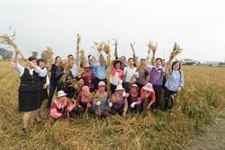 彰化縣長化身農婦麥向大城 推廣在地新鮮小麥