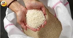 疫情增溫掀搶購潮 農糧署:稻米庫存還有9個月