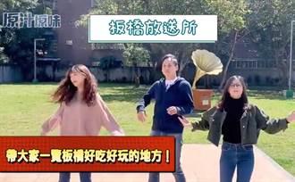 防疫期間勿出國 議員挑戰南韓潮舞行銷板橋