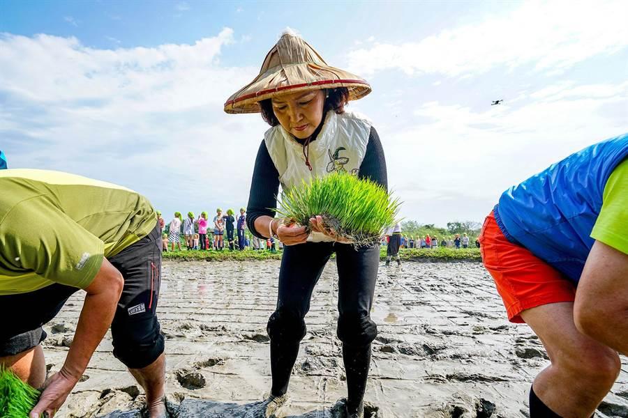 宜蘭縣長林姿妙引領眾人插秧,盼能透過農事體驗讓食農教育向下扎根。(李忠一攝)