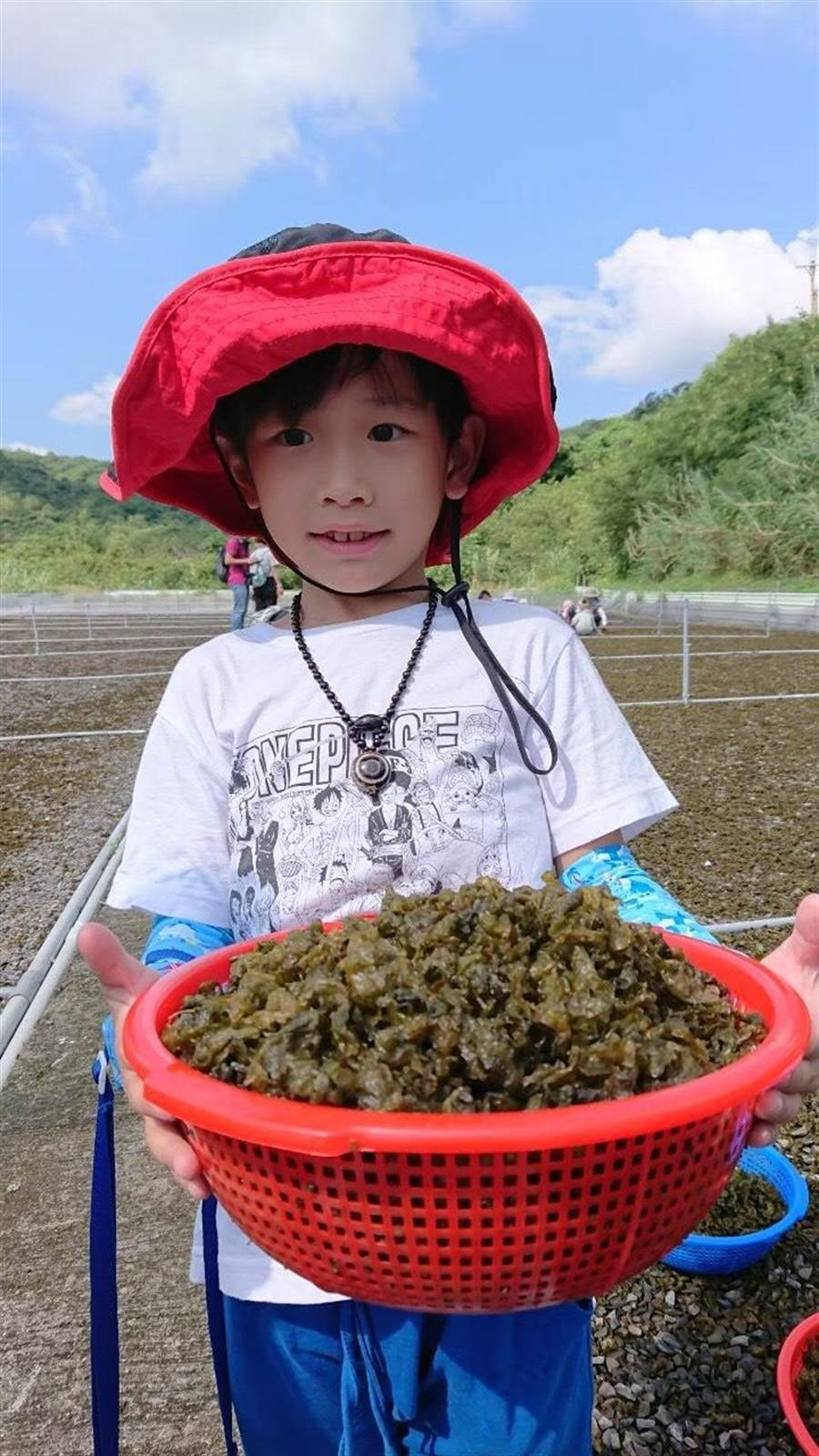 小墾丁渡假村推出「一日農夫採菇樂」活動。(圖/小墾丁渡假村提供)