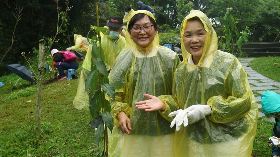 民眾於觀音山種植100株台灣山櫻花,開心比讚樂開懷(戴上容攝)