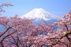 死亡直播摔落富士山 意外揭露他悲慘一生