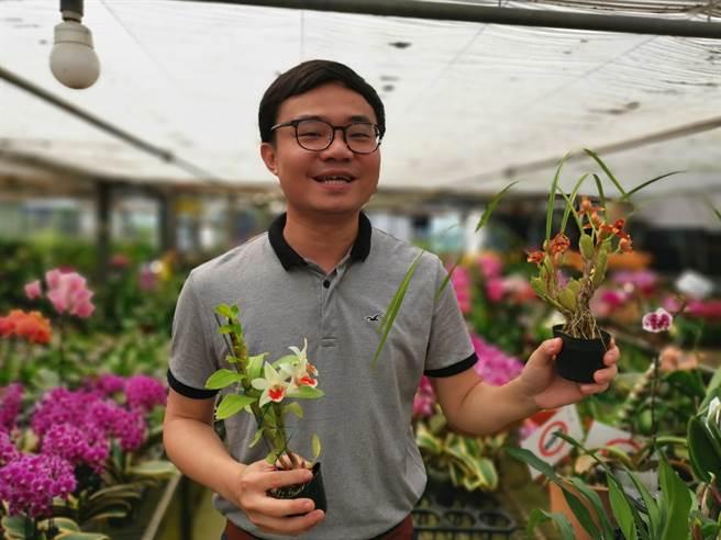 吳柏昌表示,現在國外流行有香味的蘭花,例如腋脣蘭(右)、黑毛石斛蘭(左)。(劉秀芬攝)