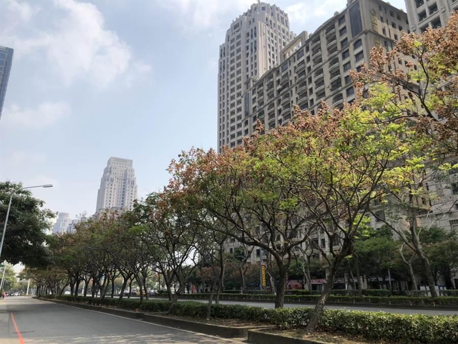 台中市七期市政路的門牌鍍金,為建案加值。(盧金足攝)
