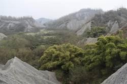 拿世界級自然地景種電?環團、陳永和齊聲炮轟 防疫時刻趁人之危