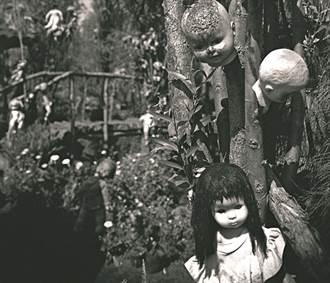 墨西哥娃娃島陰森至極 數千鬼娃掛滿樹