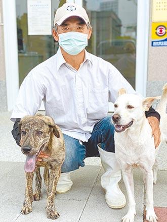 獸醫師陪復健 癱瘓狗能站能跑