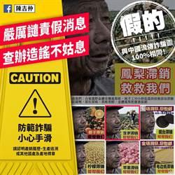 網傳台東鳳梨滯銷假消息 農委會主委陳吉仲:很生氣