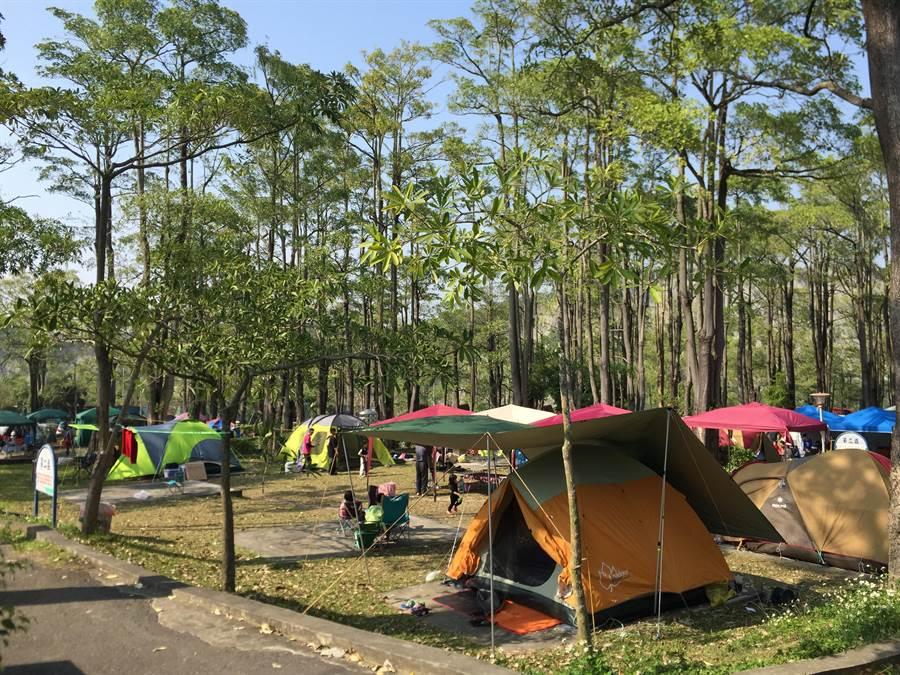 兒童節連假遊走馬瀨農場,兒童及4月壽星免費入場,露營、住宿也都有優惠。(走馬瀨農場提供/劉秀芬台南傳真)