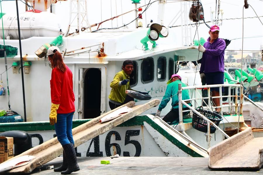 漁民指出,政府雖針對漁業祭出經濟紓困、優惠新貸還舊貸,但無「法規紓困」配合如開放船員整併補缺工,漁船依舊無法作業還貸款。(謝佳潾攝)