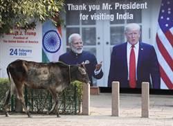美國印鈔大撒錢 印度經濟恐真要倒退21年