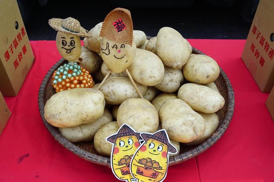潭子擁有砂質壤土,適合馬鈴薯生長,品質紮實軟Q。(王文吉攝)