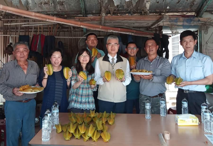 台南市農業局長謝耀清(左四)前往楠西關懷農友楊桃生產採收情形。(台南市農業局提供/劉秀芬台南傳真)