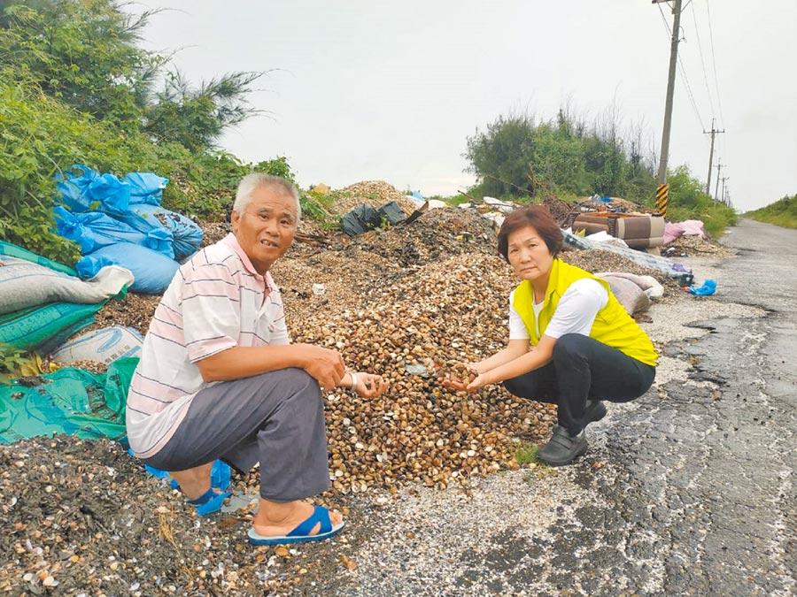 廢棄文蛤殼回收再利用,可幫助濁水溪防揚塵。(張朝欣攝)