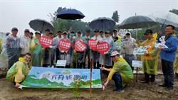 臺銀人壽台南分公司 營造「方舟新樂園」植樹活動