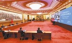 G20特別峰會 創史上6個第一