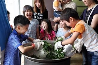 新北三峽8年級青農黃渝婷 傳承百年好茶香