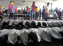 魚價崩跌 漁會代表大會提5建言救漁業