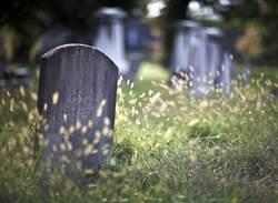 公園突冒墓碑 居民見死亡日期嚇歪