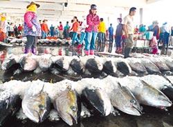 日本需求減 鮪魚價崩跌 琉球漁會提議 強制性休漁