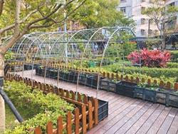 種菜囉 蘆洲水果公園換新裝