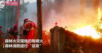 四川西昌森林火災現場仍有明火 消防隊急撲火