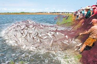 ECFA若停 農漁業先遭殃