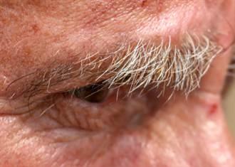 眉毛突然出現長毛 究竟代表什麼意思?