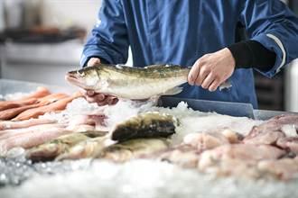 魚鰓紅代表新鮮?5撇步教你怎挑魚