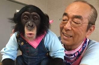 志村健逝世「不知道得新冠肺炎」醫自責沒能挽回性命