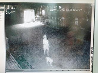 無視防疫禁令 婦抱嬰翻牆闖國小遛狗