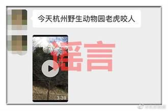 老虎吃人?杭州野生動物世界:假的
