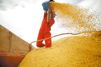 阿根廷黃豆農罷工