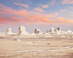 奶油沙漠美到屏息 長滿巨大白色蘑菇
