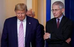 白宮經濟顧問納瓦羅與美版阿中佛契為了這個吵翻了