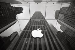 蘋果開產防疫物資 庫克:已捐2千萬個口罩