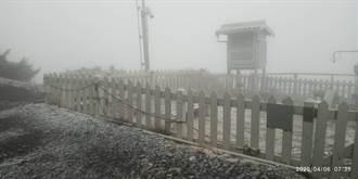 降下4月雪 玉山早上7:10變夢幻銀白仙境