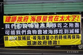 民眾架廣告籲政府開放獵捕鯨豚 海科館怒斥「本末倒置」