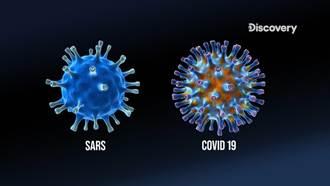 新冠肺炎怎會大流行?終結疫情關鍵在停止病毒複製力