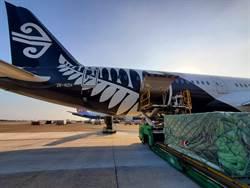 沒乘客改載貨 紐航787-9成夢幻「貨」機